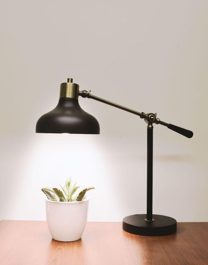 lampara alumbra planta